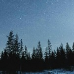 new_adventure-aesthetic-camera-forest-Favim